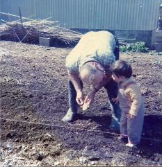 Dad in garden